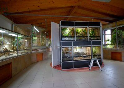 schmetterelingshaus-reptilienhaus-web