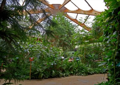 schmetterelingshaus-tropenhaus-web
